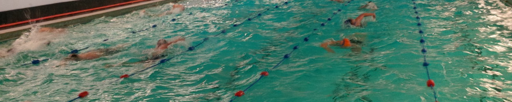 Group swimming sesion with lanes